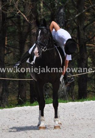 2012.10.30 Podsumowanie sezonu 2012